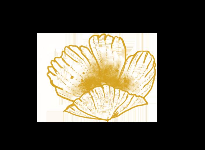 Fleur Giacomelli